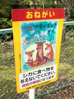 Beware the deers signpost