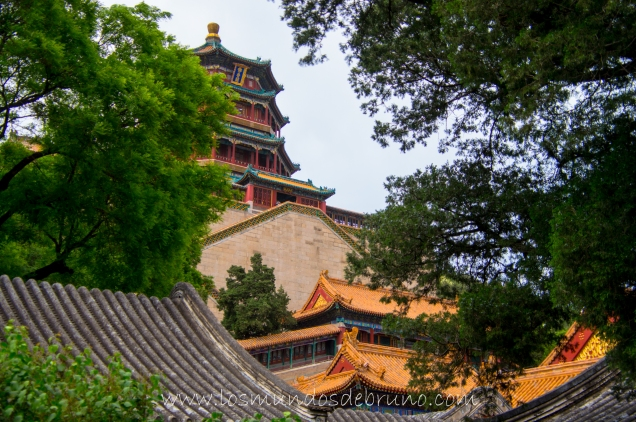 China-3